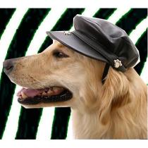 Biker Dog Hat